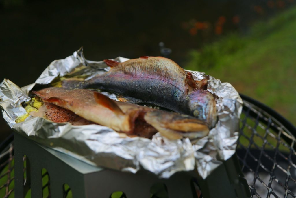 smoked trout